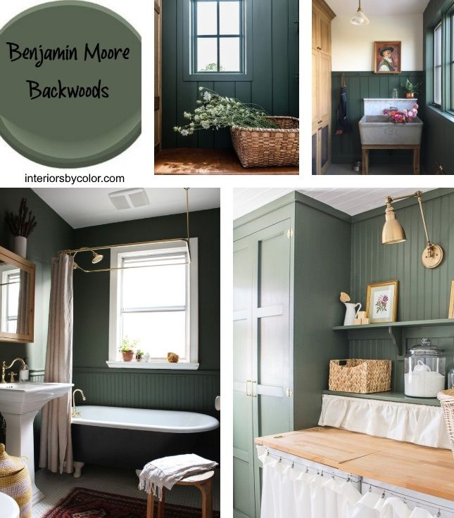 Benjamin Moore Backwoods Paint Color - Interiors By Color ...