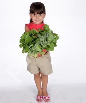 Parenting.co.id: Pilihan Sayur untuk Anak