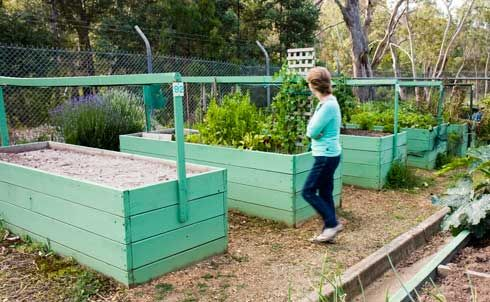 14 Best Raised Garden Bed Examples Images On Pinterest