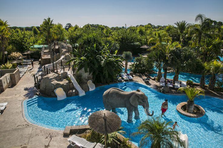 1000 images about la piscina exterior del camping la for Piscina universidad alicante