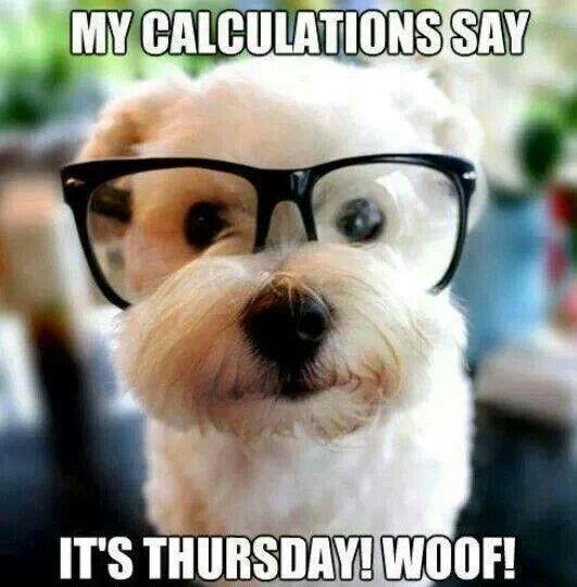 It S Thursday Dogs Amp Puppys Pinterest