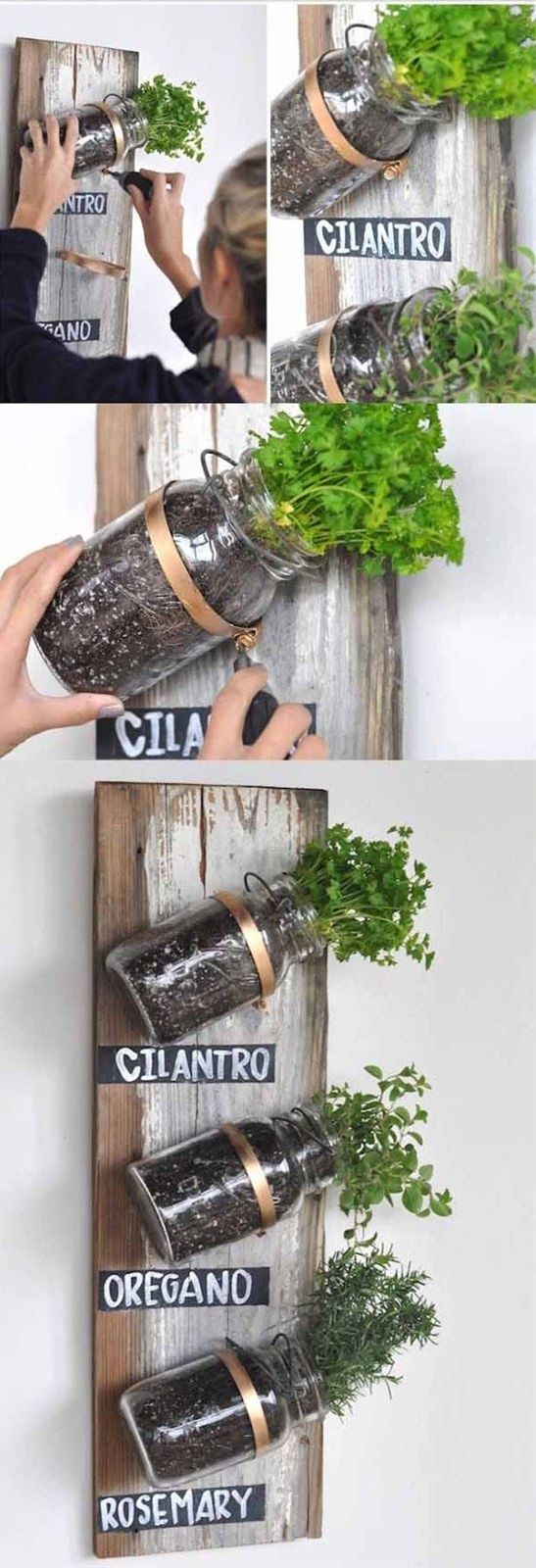 Mason jars herb garden
