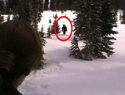Real Bigfoot Sightings 2014 | Credible Bigfoot Sighting in Colorado