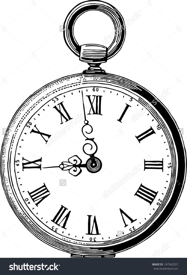 pocket watch drawing Google Search Pocket watch