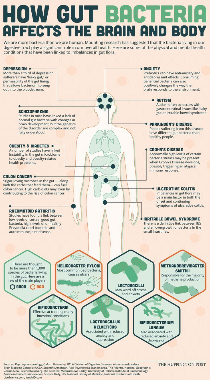 "Pay Attention to your Gut Bacteria How gut bacteria affects the brain and body infographic ""We are more bacteria than we are human. Mounting research has suggested that the bacteria living in our digestive tract play a significant role in overall health. Here are some of the physical and mental health conditions that have been linked to imbalances in gut flora."""