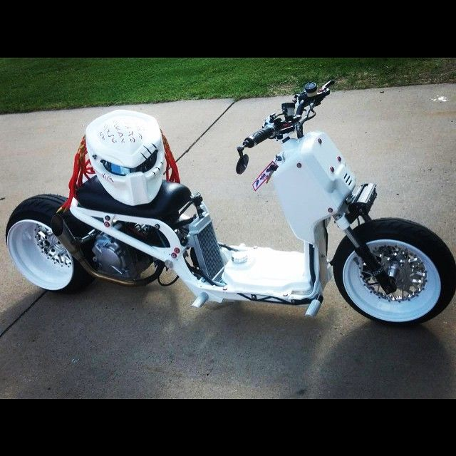 1000 Ideas About Custom Honda Ruckus On Pinterest Honda