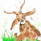 Funny Goat by Corinne Matus