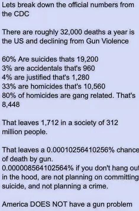 The problem isn't guns it's stupid people in political office and the people who voted to put them their