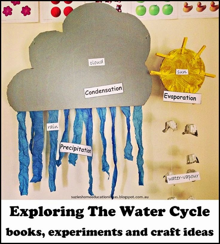 Exploring The Water Cycle - books, experiments and craft ideas for learning about the water cycle