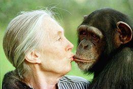 Humana- homo sapiens