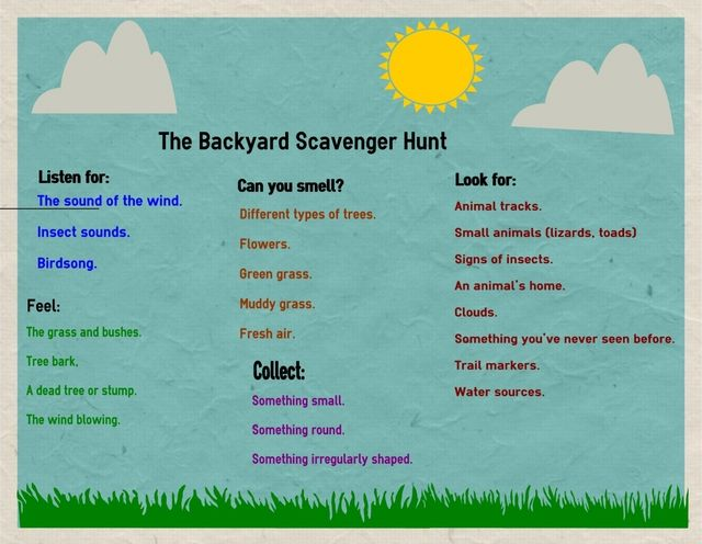 Go on a Backyard Scavenger Hunt with your kids to explore the nature you can find in your own backyard.