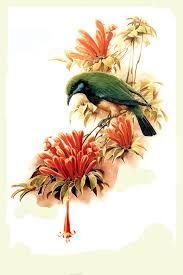 Картинки по запросу рисунки птиц