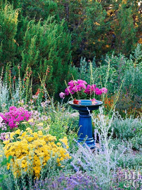 Keep the color coming all season long with this easy-care garden.