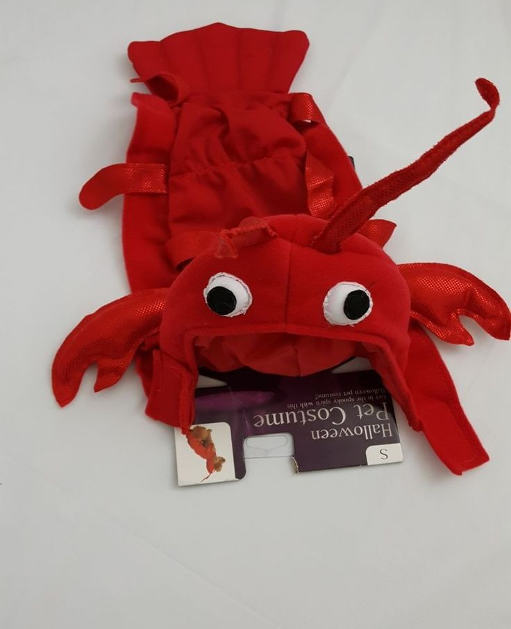 Lobster costume pet dog halloween small back length 10