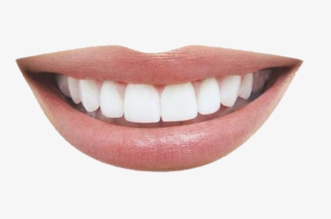 Smiling Mouth Png Articulate Element Mouth Mouth Clipart Oral Mouth Clipart Mouth Png
