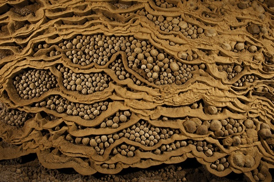 Rare cave pearls fill dried-out terrace pools in Hang Son Doong, Vietnam. This unusually large collection of stone spheres formed drip by drip over the centuries as calcite crystals left behind by water, layered themselves around grains of sand, enlarging over time.