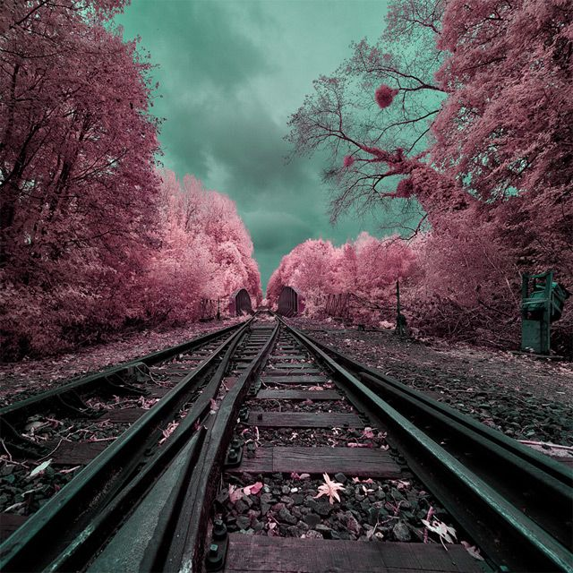 The Surreal, Infrared Photography of David Keochkerian