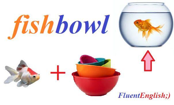 fish + bowl = fishbowl! (круглый аквариум)
