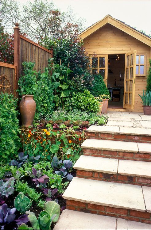 Landscaping With Edibles : Vegetable and herb flower garden with potting house shed brick patio steps fence climbing