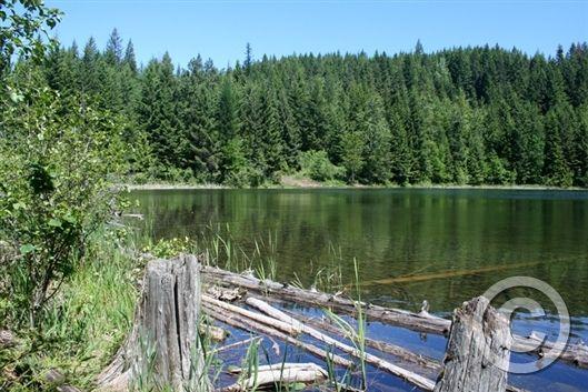 Antelope lake clark fork idaho idaho lakes pinterest for Lake fork fishing hot spots