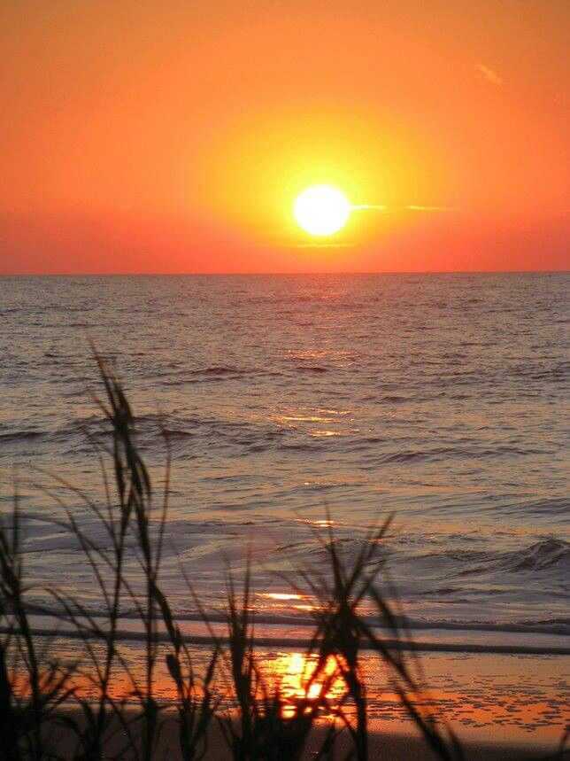 138 Best The Sun Of Myrtle Images On Pinterest