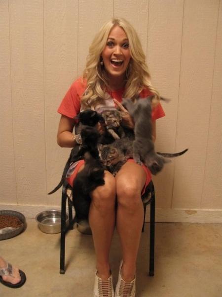 So many kittens!!!