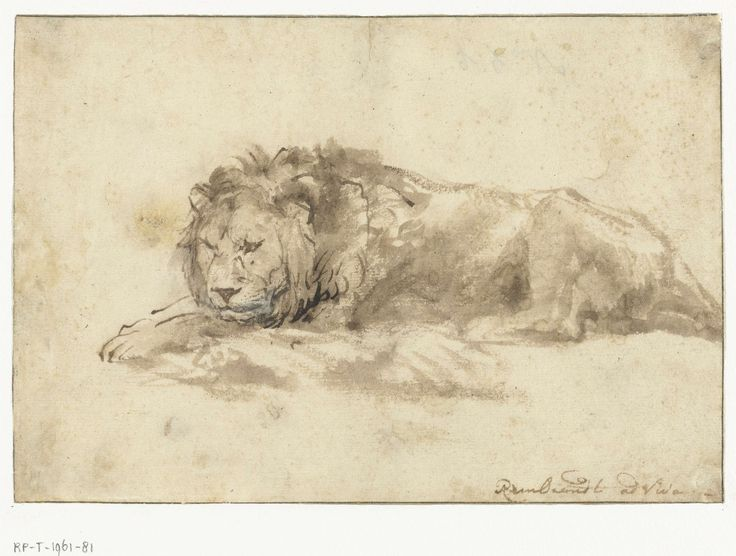 And now it's time to relax: we won! - Liggende leeuw, Rembrandt Harmensz. van Rijn, 1650 - 1659
