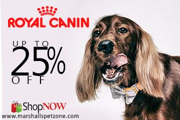 Royal Canin Pet Food: Gear Up Your Savings. Up to 25% OFF. (Grab Free Samples and Free Rs.250 Coupon On Every Order T&C Apply).