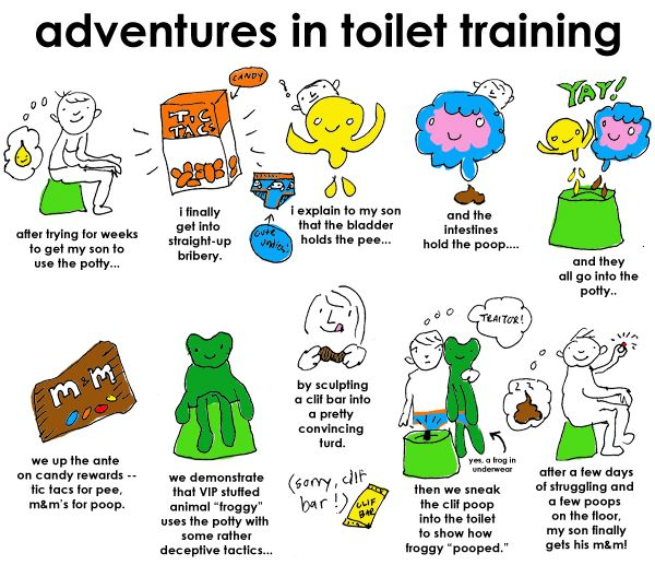 3 Day Potty Training   Potty training kids, Starting potty
