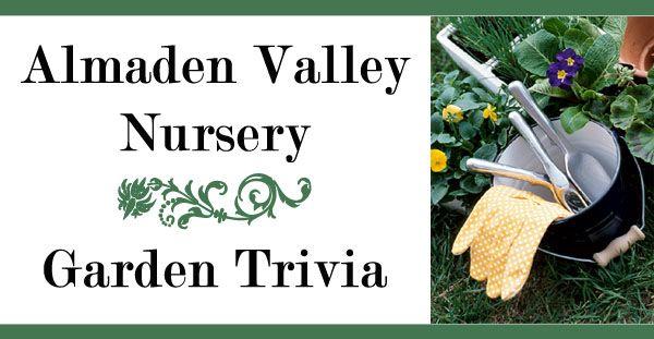 Almaden Valley Nursery