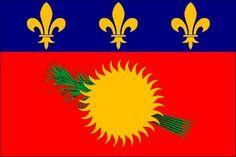 De niet-officiële vlag van Guadeloupe bestaat uit een wit veld met daarop het regionale logo. Dit logo toont een gestileerde zon en een vogel op een blauw-groen vierkant. Onder het logo staat de geel onderstreepte tekst REGION GUADELOUPE. Deze vlag heeft geen officiële status; de enige officiële vlag is de vlag van Frankrijk.