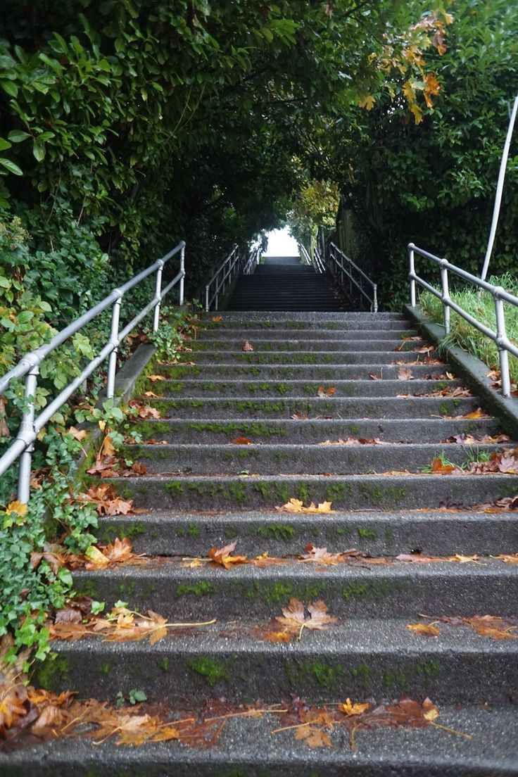 The Howe Street Stairs are Seattleu0027s longest