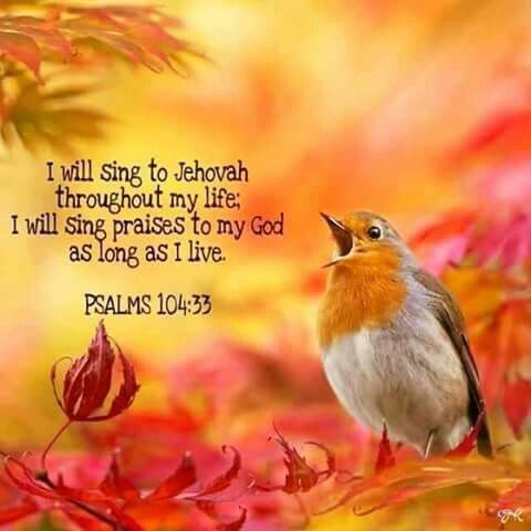 ༺♥༻ It's Not just a dream, Gods kingdom by Christ Jesus will bring the reversal of old age! ↷-ˏ`ღ´ˎ-↶ JW.org has the Bible and bible based study aids in 930+ languages (+Sing). These aids are designed to be used with your bible ༻♡༺ TV.JW.ORG Online TV for your computer, tablet, or smartphone. Browse the library of movies, documentaries, and videos. Watch anywhere, anytime. Listen to music, drama productions, and dramatic Bible readings. •• We also offer free in-home bible studies. All at no