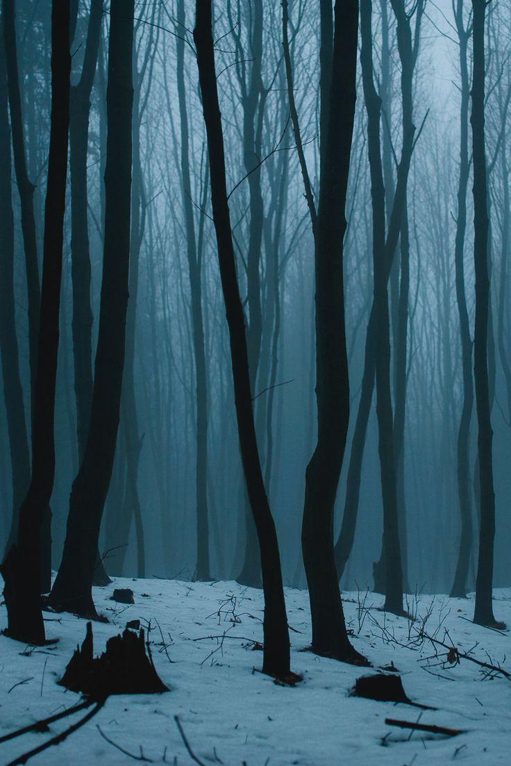 anotic: Foggy Weekend | Michal Zborovjan