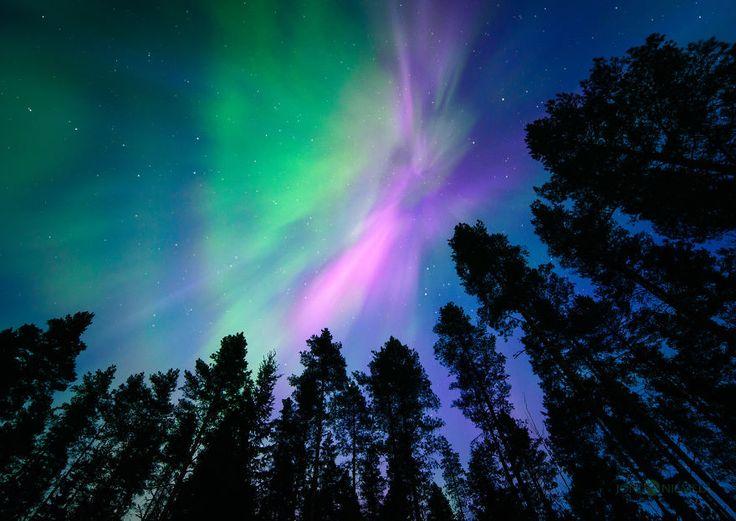 Focus sur ces superbes aurores boréales immortalisé en Ostrobotnie du Sud, région du centre-ouest de la Finlande