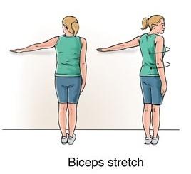 17 best images about Shoulder Rehap on Pinterest | Raising ...
