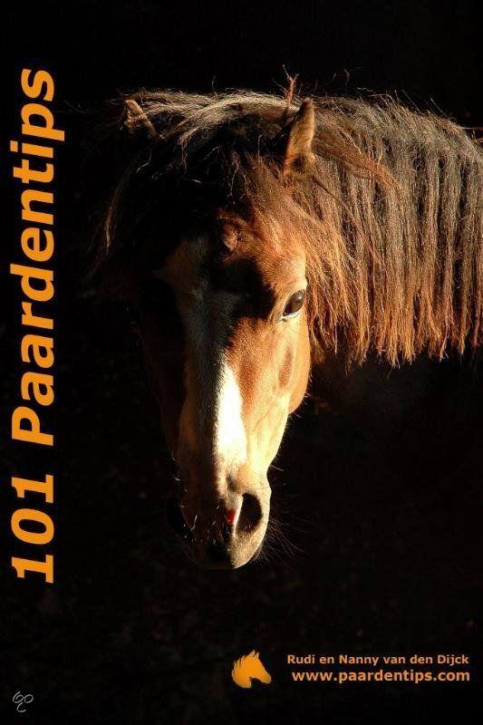 101 Paardentips