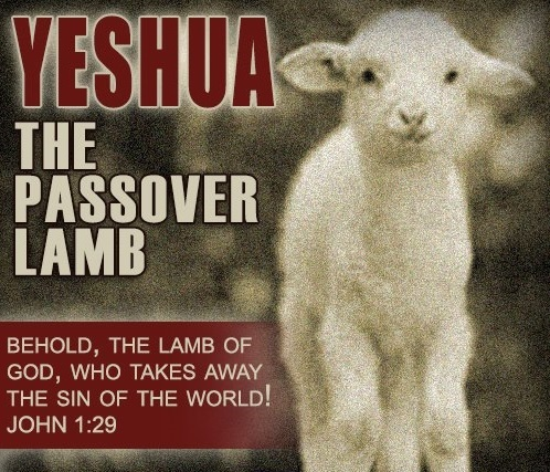 Yeshua is our Passover Lamb | Passover | Pinterest | Next ...