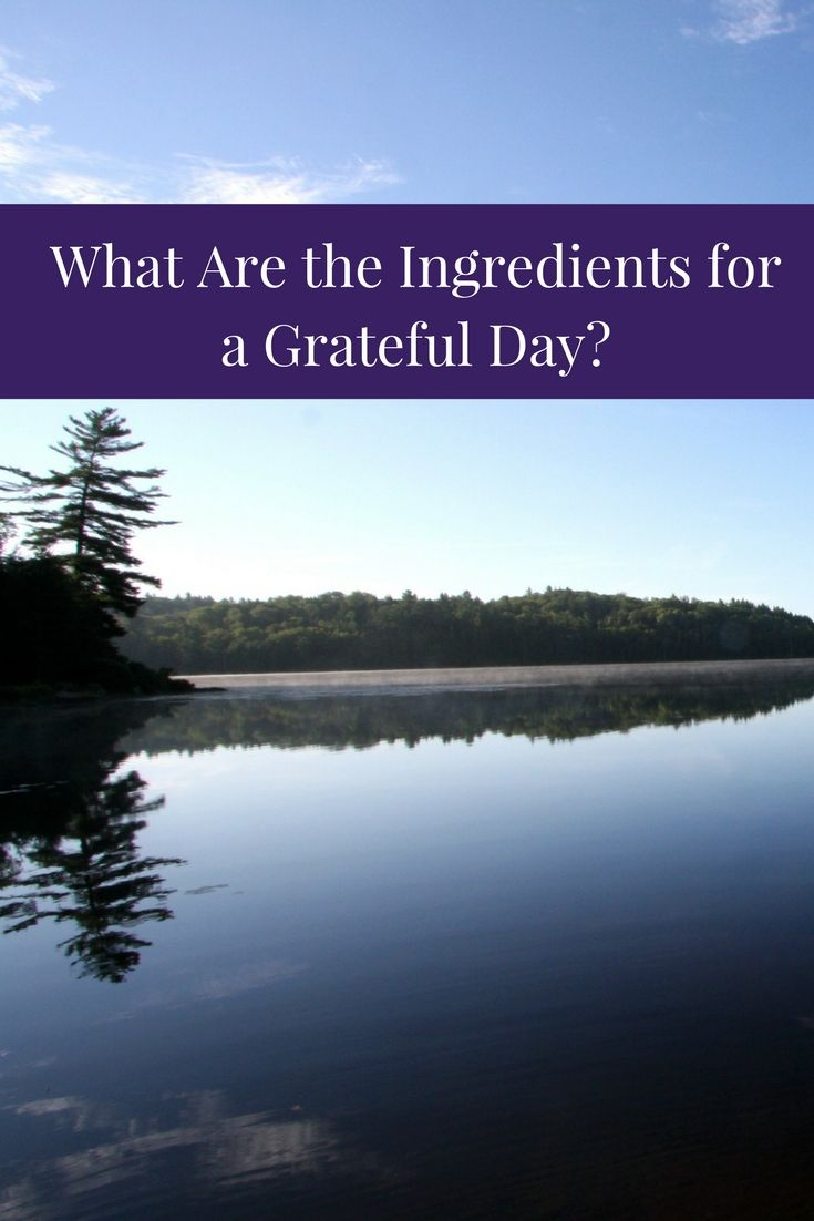 What are the ingredients for a grateful day? This is a recipe for simple daily gratitude.