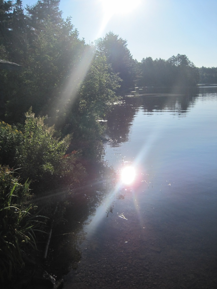 Morning on Cache Lake - Algonquin 2011