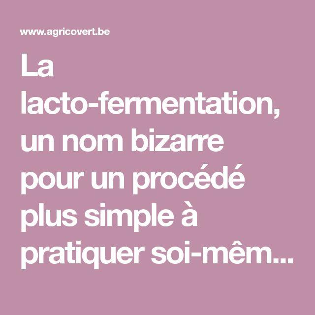 La lacto-fermentation, un nom bizarre pour un procédé plus simple à pratiquer soi-même qu'il n'y paraît « Agricovert / Coopérative agricole de producteurs et de consom'acteurs