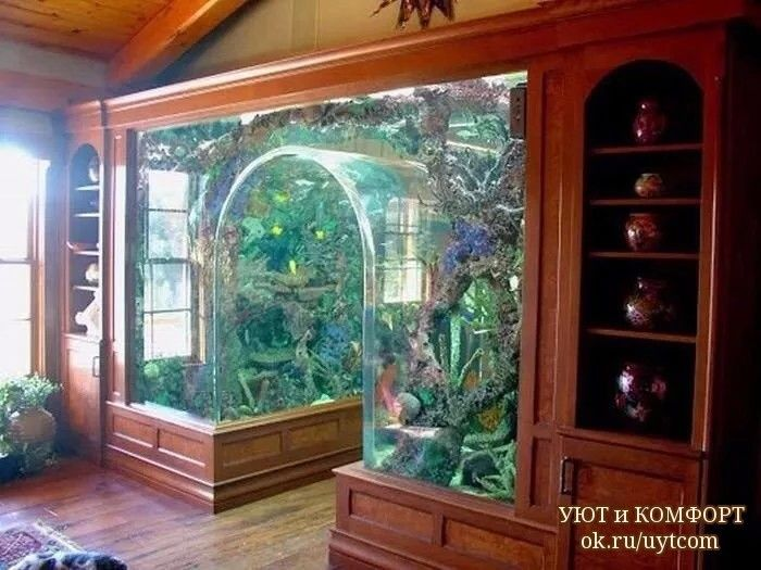 25 best ideas about home aquarium on pinterest amazing fish tanks tank tank and world of - Home aquarium designs ...