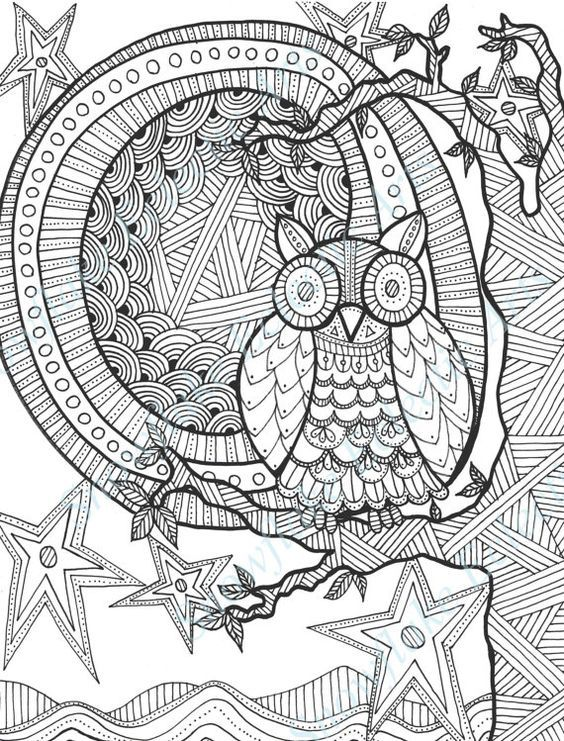 Owl Starry Moon Colouring Page