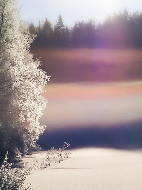 Wintermist