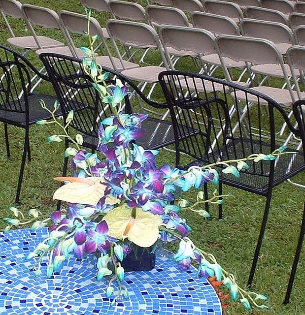 Blue Orchid Centerpieces   Recent Photos The Commons Getty Collection Galleries World Map App ...