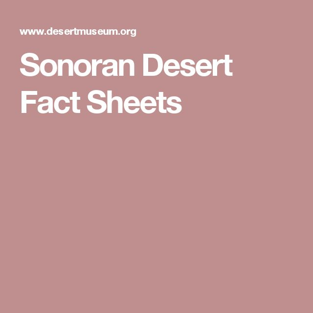Sonoran Desert Fact Sheets