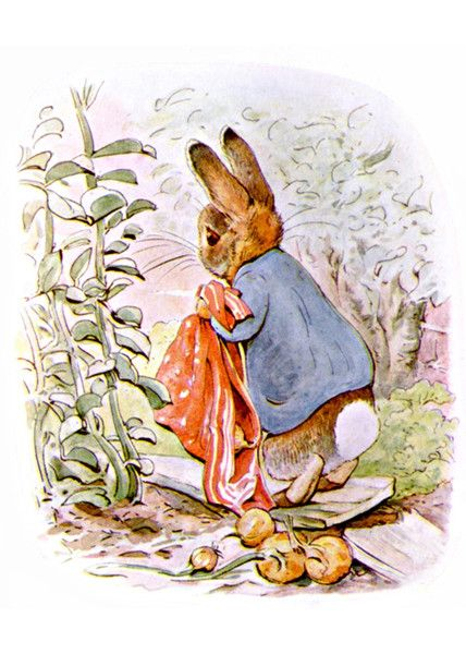 Dropping Onions by Beatrix Potter | Art Posters & Prints