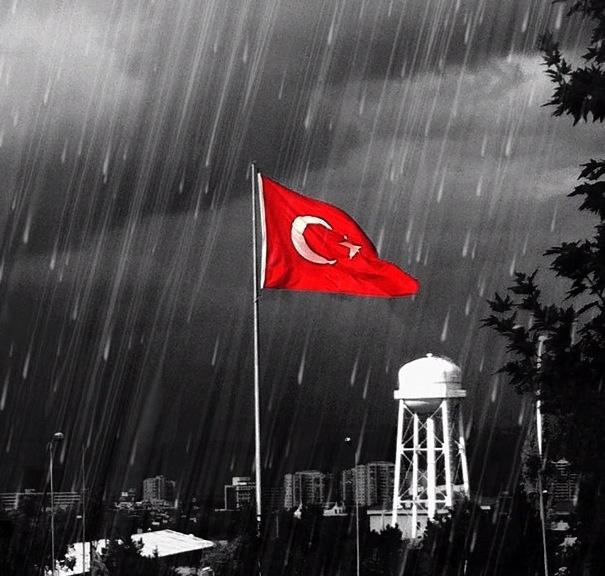 Düşen Yağmurlara Aldırmadan, Vazgeçme Dalgalanmaktan..