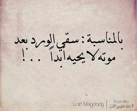 لانني انثى عمياء Words Quotes Talking Quotes Pretty Quotes