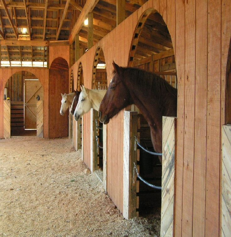 409 Best Horse Barns And Facilities Images On Pinterest